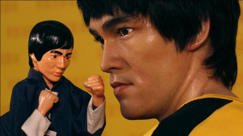 Comment s'appelle le cousin végétarien de Bruce Lee ?