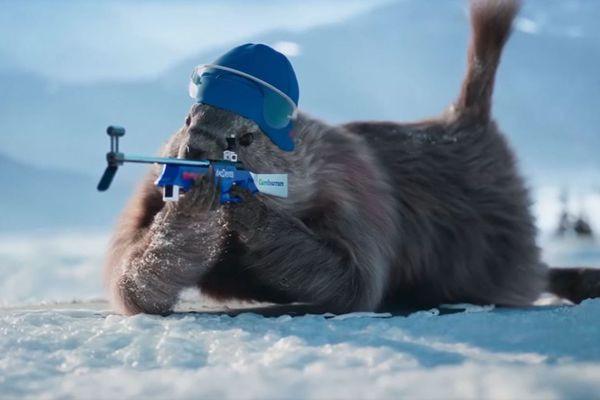 13 mots commençant par M comme Marmotte