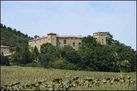 Je vous propose de repartir en Occitanie, cette fois à la découverte du château de La Serpent. Commune de l'arrondissement de Limoux, elle se situe dans le département ...