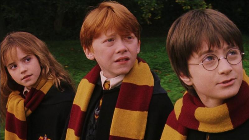 Quelles épreuves Harry, Ron et Hermione affrontent-ils pour atteindre la Pierre philosophale ?