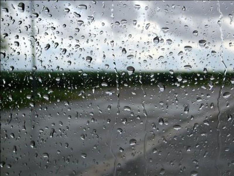 """Quel réalisateur a mis en scène le long-métrage """"Black rain"""" ?"""