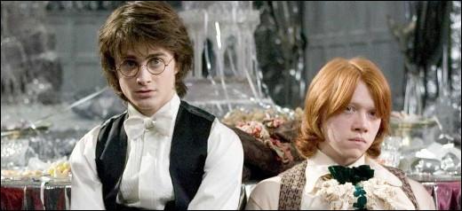 Qui accompagne Harry Potter au bal de Noël ?