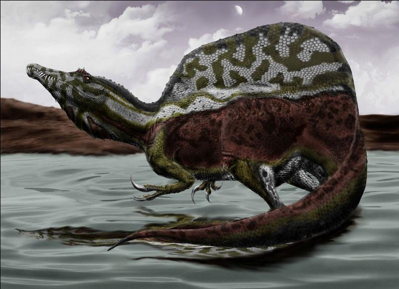Tu l'a sûrement vu dans Jurassic park 3. Comment s'appelle-t-il ?