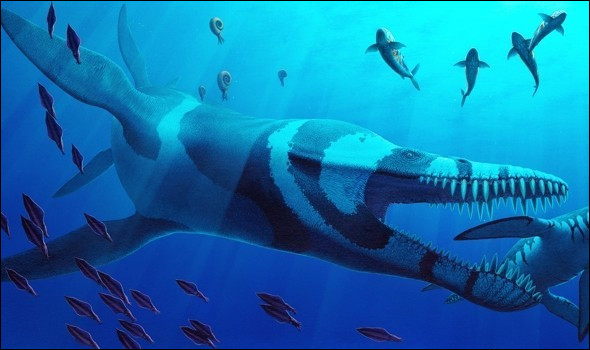 Allez-vous trouver comment se nomme cet énorme reptile marin vivant au temps des dinosaures ?
