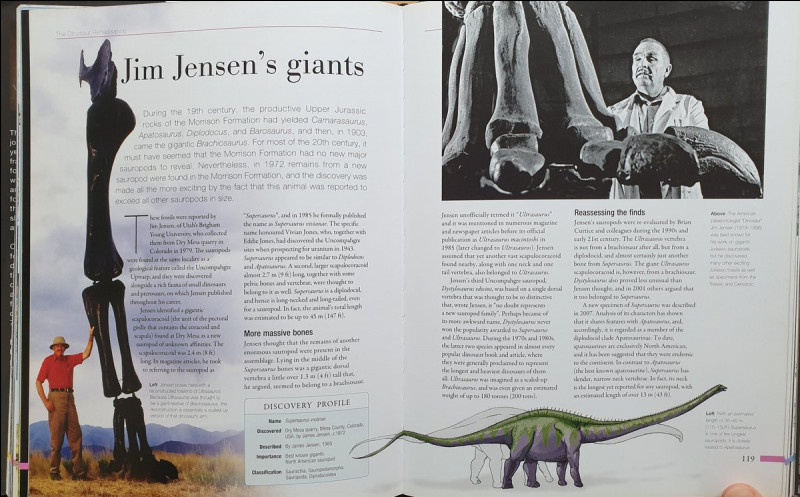 En 1985 Jim Jensen découvrit Supersaurus, un dinosaure géant. En 1991 il crut découvrir le plus grand dinosaure du monde qu'il baptisa Ultrasauros. En réalité, il s'agissait de vertèbres de Supersaurus mélangées avec l'os d'une patte d'un...