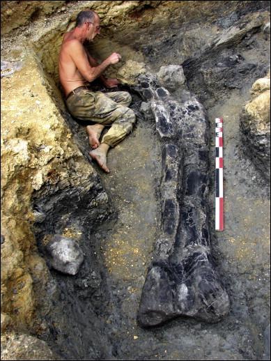 Jean-François Tournepiche (1956- ) est un paléontologue français qui supervise les fouilles sur le seul grand gisement de dinosaures de France. Ce gisement se trouve dans la région :