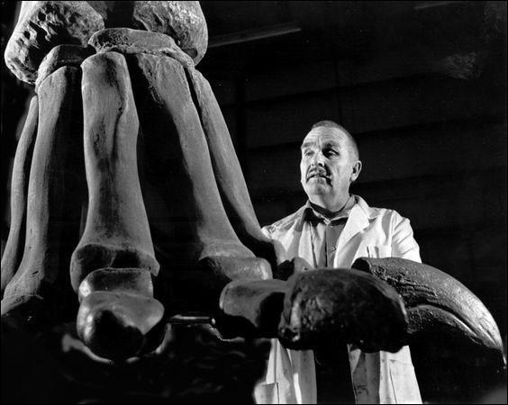 Jim Jensen (1918-1998) était un paléontologue autodidacte qui n'a pas fait d'études supérieures. Avant de découvrir des nouveaux dinosaures, il était artiste peintre et sculpteur mais aussi :