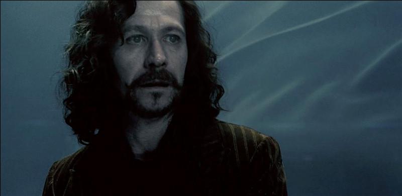 Qui tue Sirius ?