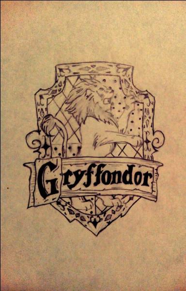 Qui est ton petit copain dans « Harry Potter » ?