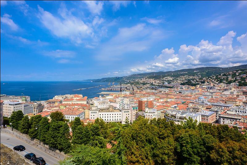 Dans quel pays devrez-vous vous rendre pour visiter la ville de Trieste ?
