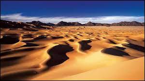 Quel océan borde le Niger (le pays) ?