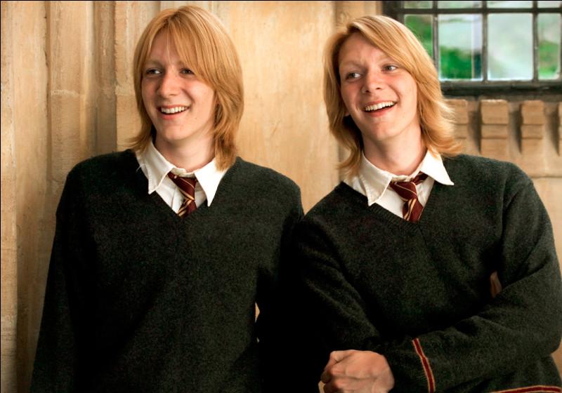 Comment se nomment les jumeaux de la famille Weasley ?