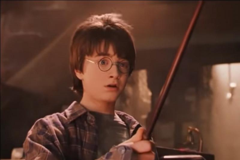 Qui est le parrain de Harry Potter surnommé Patmol ?