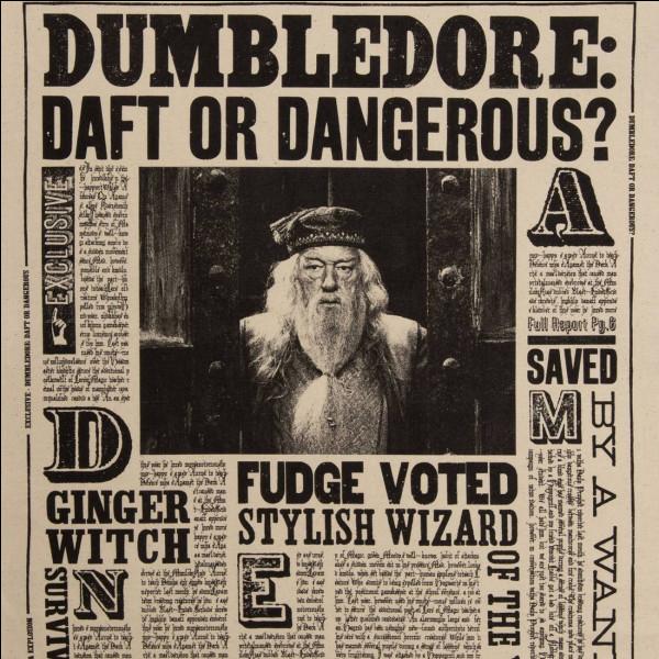 Comment se nomme le journal de Harry Potter ?
