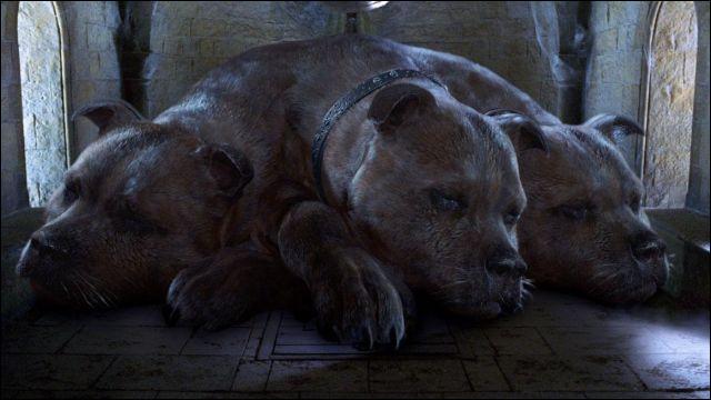 Quel objet Touffu, le chien à trois têtes garde-t-il en sécurité ?