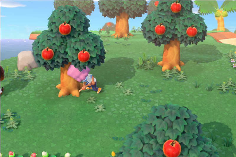 Connais-tu bien 'Animal Crossing New Horizons' ?