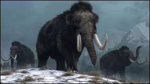 Le mammouth est un mastodonte ?