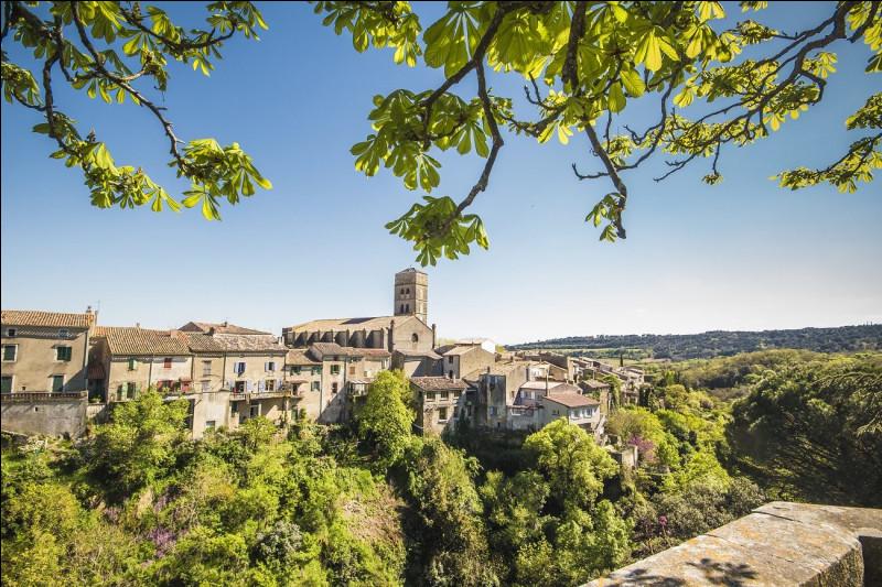 Montolieu, bâti sur les pentes des la Montagne Noire, village du livre depuis 1989, compte 15 librairies ; le village se trouve dans le département de l'/la...