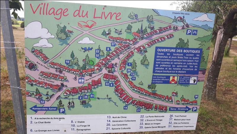 Fontenoy-la-Joûte, village du livre depuis 1996 compte 13 librairies ; petit village situé entre les vallées de la Mortagne et de la Meurthe, il se trouve dans le département des/de la/de l' ...