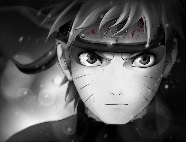 (Naruto Uzumaki) Quelle mission devait-il accomplir lorsqu'il était accompagné de Neji et Tenten au pays des Oiseaux ?