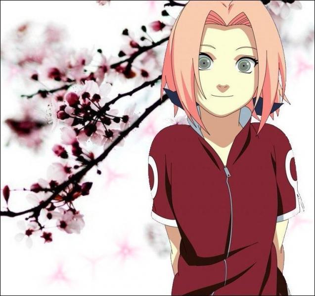 (Sakura Haruno) Que fait Sasuke lorsqu'elle tente de le dissuader de déserter le village ?