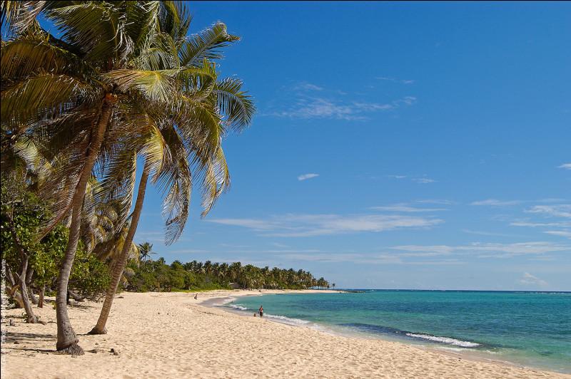 De quelle île Marie-Galante dépend-elle ?