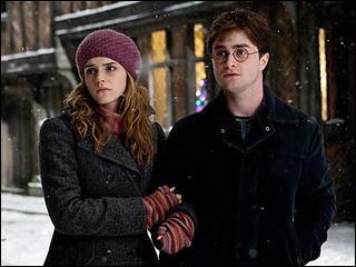 Parmi ces propositions, qu'est-ce qui ne se passe pas lorsque Harry et Hermione sont à Godric's Hollow ?