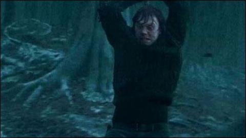 Grâce à quoi Ron détruit-il le médaillon de Salazar Serpentard ?