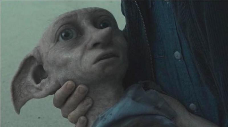 Par quoi Dobby meurt-il ?