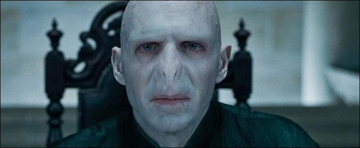 Pourquoi Voldemort veut-il prendre une autre baguette ?