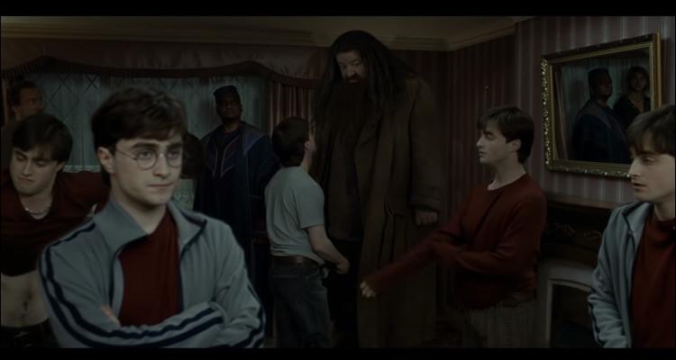 Combien de personnes se font passer pour Harry ?
