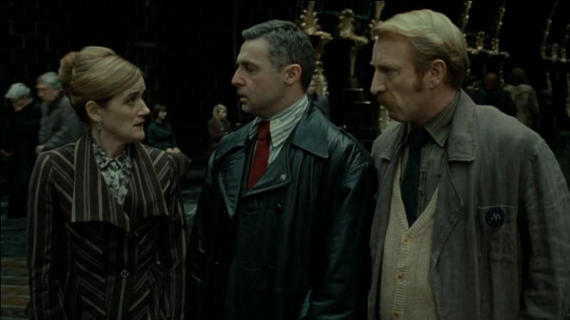 Comment Harry, Ron et Hermione se rendent-ils au ministère de la Magie ?