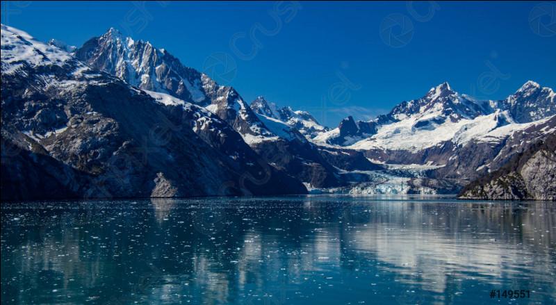 Glacier Bay est le royaume des grizzlis et des caribous. Où est situé cet immense champ de glace ?