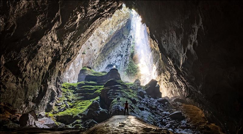 La plus grande grotte du monde Son Doong, située au Vietnam, abrite un écosystème unique, menacé par le tourisme de masse. Quelle est la hauteur maximale de sa voûte ?