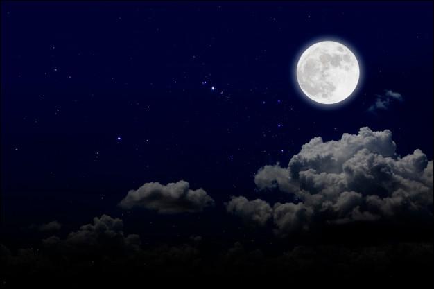 Quel est l'autre nom de la belle de nuit ?
