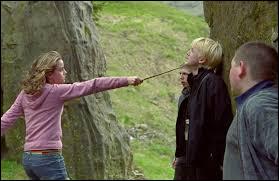 Durant sa deuxième année de scolarité, de quoi Drago Malefoy traite-t-il Hermione ?