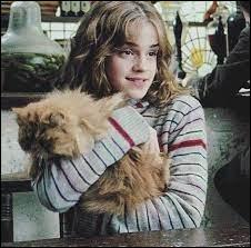 En troisième année, elle achète un chat. Comment se nomme-t-il ?