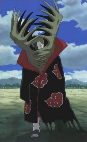 Qui est le binôme de Zetsu ?