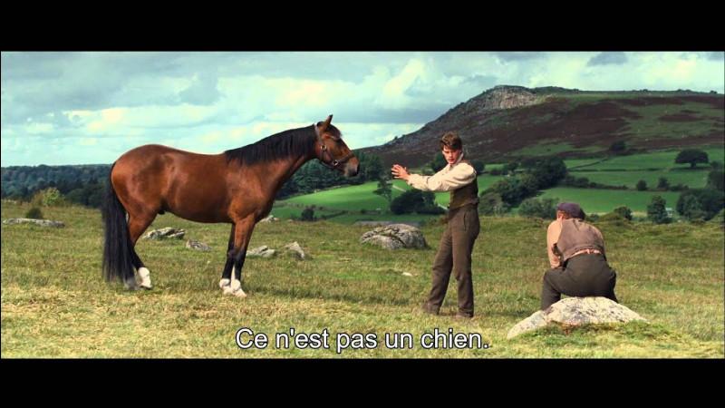 """""""Cheval de guerre"""" est un film réalisé par Steven Spielberg."""