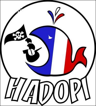 Comment fonctionne 'Hadopi' ?