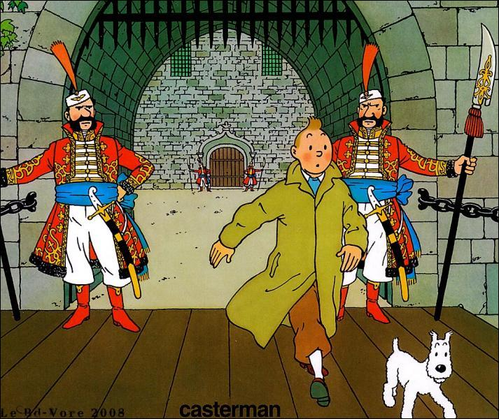 Qu'est ce que Tintin et Milou vont aller récupérer pour Ottokar à la limite de la Syldavie et de la Bordurie ?