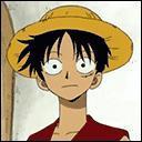 Comment se nomme le fruit que Luffy a mangé ?