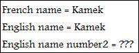 En Anglais, Kamek porte deux noms : le nom Kamek ainsi que le nom ...