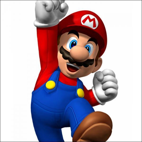 Quel est le métier officiel de Mario ?