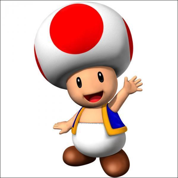 Quel personnage a un champignon sur la tête ?