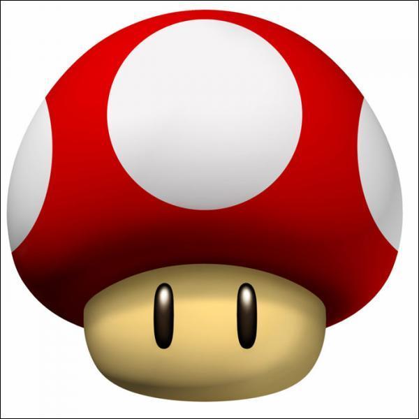 Dans le dernier Super Mario Bros, il doit aussi sauver un autre personnage en le portant le long d'un niveau sur ses épaules, qui est-ce ?