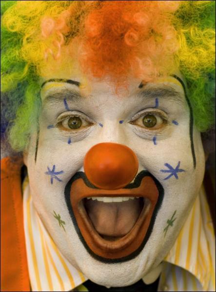 Qu'est-ce qu'un cirque ?