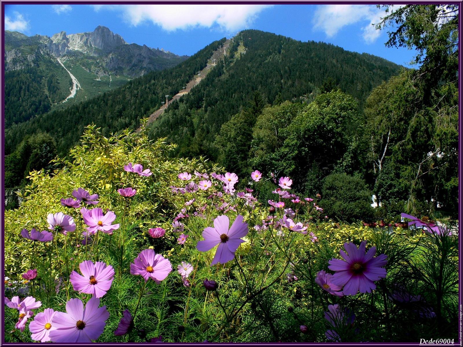 Montagne et traditions