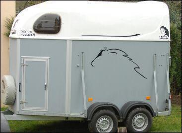 Coche les 3 parties du cheval qui doivent être protégées en priorité pendant le transport :