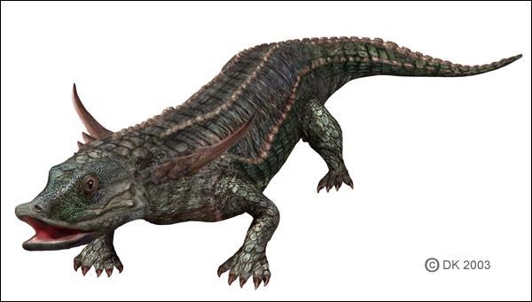 Chasmatosaurus Quizz q...